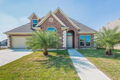 League City Single Family Home For Sale: 307 Twin Timbers