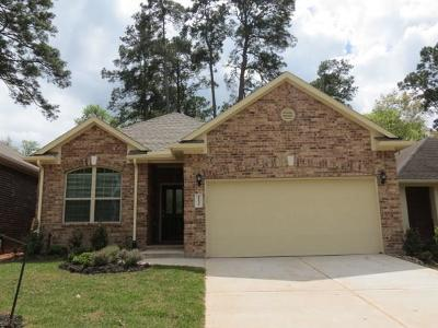 Montgomery Single Family Home For Sale: 11231 Burning Tree Drive