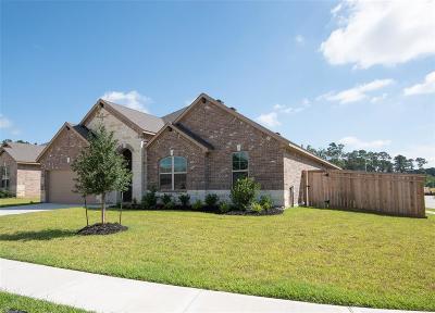 Houston Single Family Home For Sale: 18202 Alcantara River Way