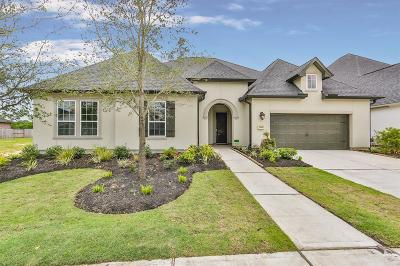 Katy Single Family Home For Sale: 7011 Champion Trail