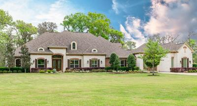 Richmond Single Family Home For Sale: 3102 River Forest Drive
