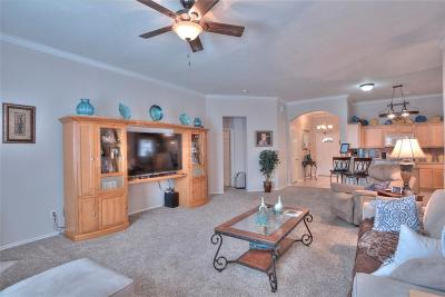 Pearland Single Family Home For Sale: 4117 Merlet Drive