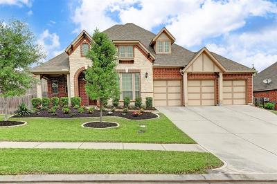 Conroe Single Family Home For Sale: 311 Arbor Trail Lane