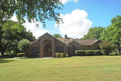 Tombal Single Family Home For Sale: 19203 Mueschke Road