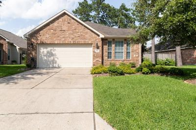 Pearland Single Family Home For Sale: 1313 N Riviera Circle
