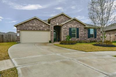 Katy Single Family Home For Sale: 23510 Blue Prato Court
