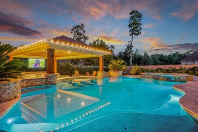 Spring Single Family Home For Sale: 25606 Windy Isle Court