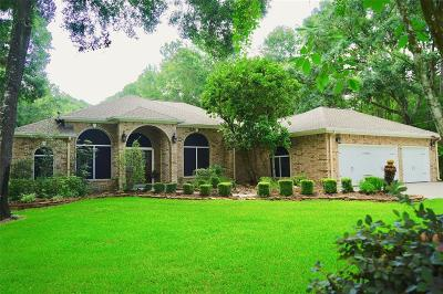 Porter Single Family Home For Sale: 22861 Weser Drive
