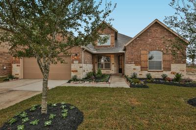 Manvel Single Family Home For Sale: 18906 Camden Knoll Court