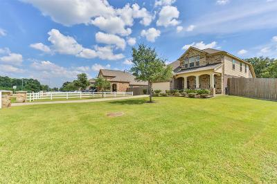 Baytown Single Family Home For Sale: 7823 Needlepoint Road