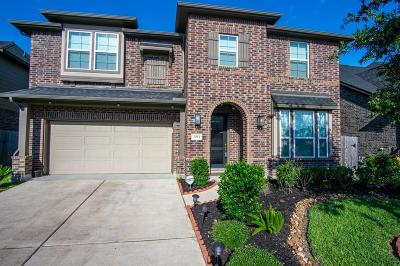 Pearland Single Family Home For Sale: 2953 Candle Falls Lane