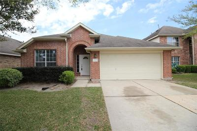 Houston Single Family Home For Sale: 16902 Great Oaks Glen Drive