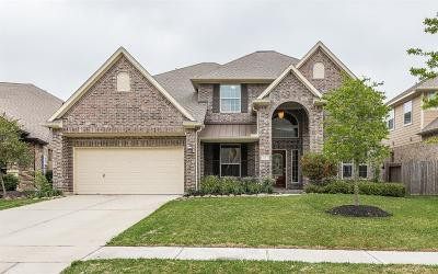 League City Single Family Home For Sale: 4703 Salinas Lane