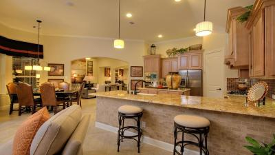 Fulshear Single Family Home For Sale: 28819 Winding Terrace