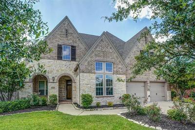 Manvel Single Family Home For Sale: 2634 Joshua Tree Lane