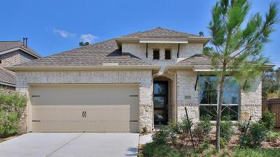 Single Family Home For Sale: 27137 Orleans Hill Court