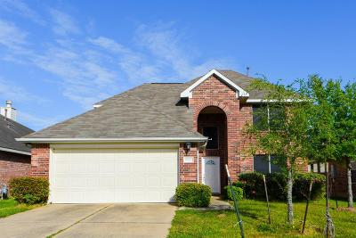 Houston Single Family Home For Sale: 6906 Stoneyvale Drive