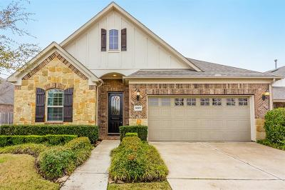 Sugar Land Single Family Home For Sale: 1623 Ralston Branch Way