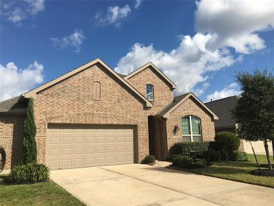 League City TX Single Family Home For Sale: $366,500