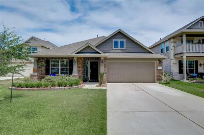 Conroe Single Family Home For Sale: 2217 Ivy Wall Drive