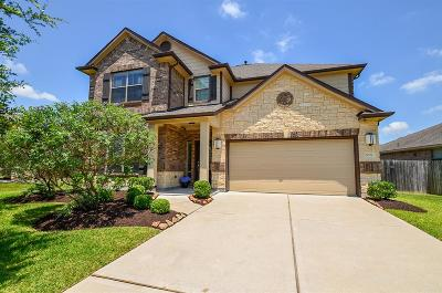 Southern Trails Single Family Home For Sale: 3009 Trail Creek Court
