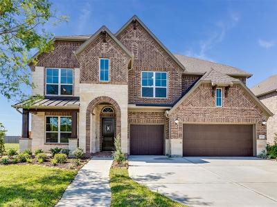 Pearland Single Family Home For Sale: 7222 Lake View Terrace Drive