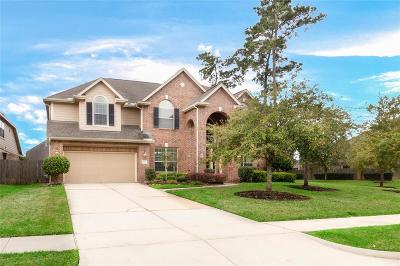 Summerwood Single Family Home For Sale: 14602 Castle Cove Lane