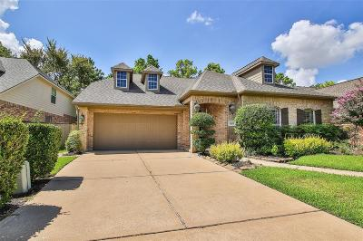 Houston Single Family Home For Sale: 9511 Fern Wood Forest