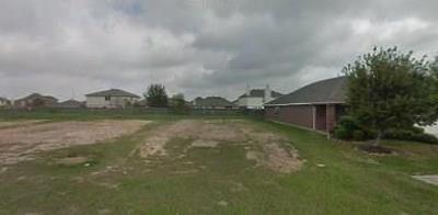 Harris County Residential Lots & Land For Sale: 18226 Silver Timber Court Court