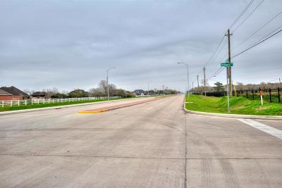 Pearland Residential Lots & Land For Sale: 16618 County Road 831
