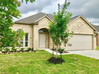 Single Family Home For Sale: 15714 Joe Dimaggio Street