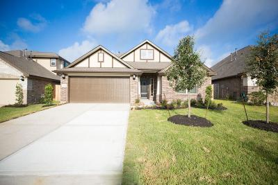 Rosenberg Single Family Home For Sale: 2414 Shoal Valley Lane