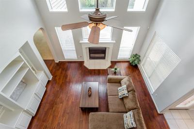 Houston Single Family Home For Sale: 19511 Desert Ivy Drive