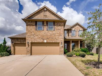 Pearland Single Family Home For Sale: 2715 Teal Sky Ct Court