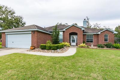 Baytown Single Family Home For Sale: 1523 William Trace Trace