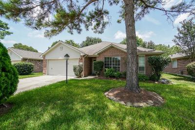 Katy Single Family Home For Sale: 22122 Kenlake Drive