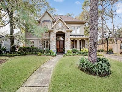 Houston Single Family Home For Sale: 1501 Pine Chase Drive