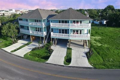 La Porte Single Family Home For Sale: 717 Bayshore Dr Drive