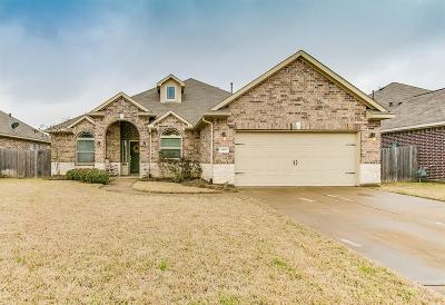 Katy Single Family Home For Sale: 6519 Crystal Forest Trail
