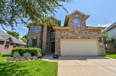 Houston Single Family Home For Sale: 10306 Lyndon Meadows Drive