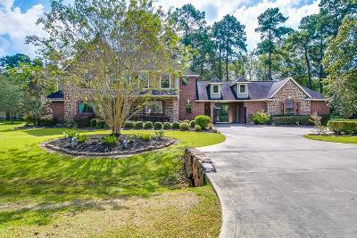 Huffman Single Family Home For Sale: 1214 Commons Waterway Drive