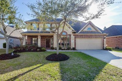 Friendswood Single Family Home For Sale: 1221 Chuck Drive