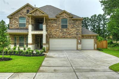 Tomball Single Family Home For Sale: 12527 Sherborne Castle