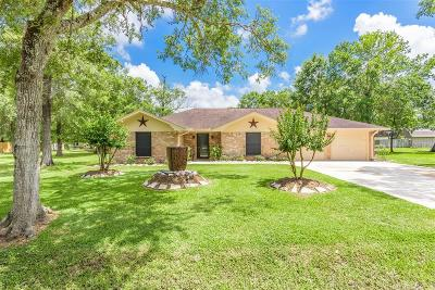 Alvin Single Family Home For Sale: 223 County Road 193