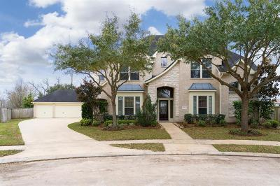 Sugar Land Single Family Home For Sale: 7019 Lake Haven Court