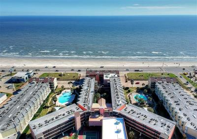 Galveston Condo/Townhouse For Sale: 6300 Seawall Boulevard #9116