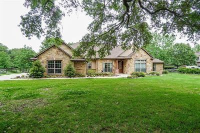 Single Family Home For Sale: 5734 Village Green Drive