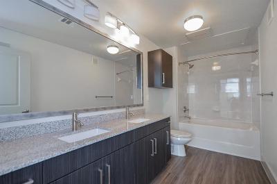 Harris County Rental For Rent: 4508 Graustark #337