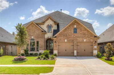 Fulshear Single Family Home For Sale: 2110 Great Egret Bend