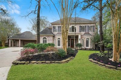 The Woodlands Single Family Home For Sale: 2 Pale Dawn Place